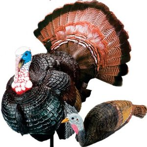 Image Of Turkey Decoys